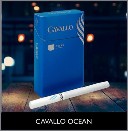 CAVALLO OCEAN