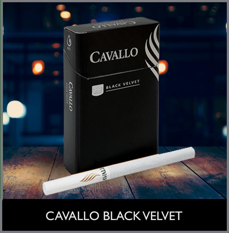CAVALLO BLACK VELVET